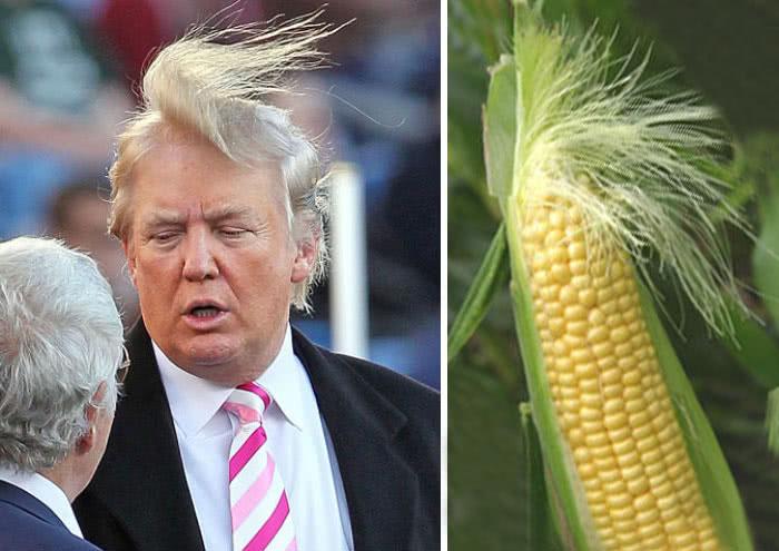 ο πρωθυπουργός των ΗΠΑ με μαλλί φούντα καλαμποκιού
