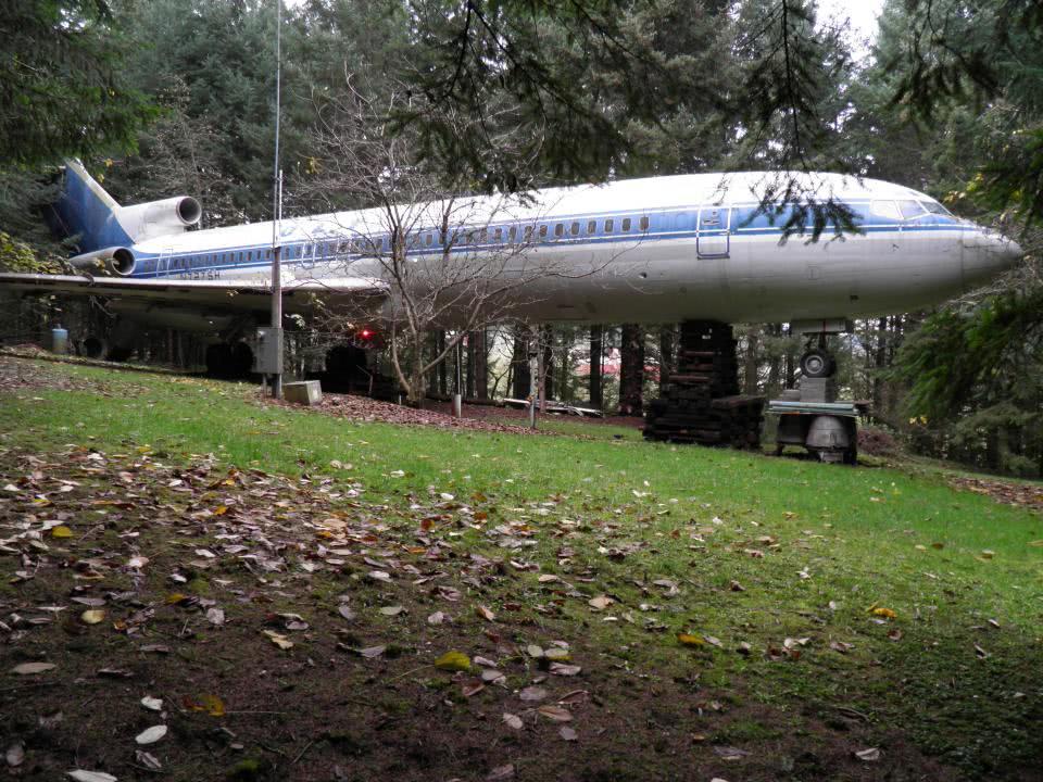αεροπλάνο σε δάσος