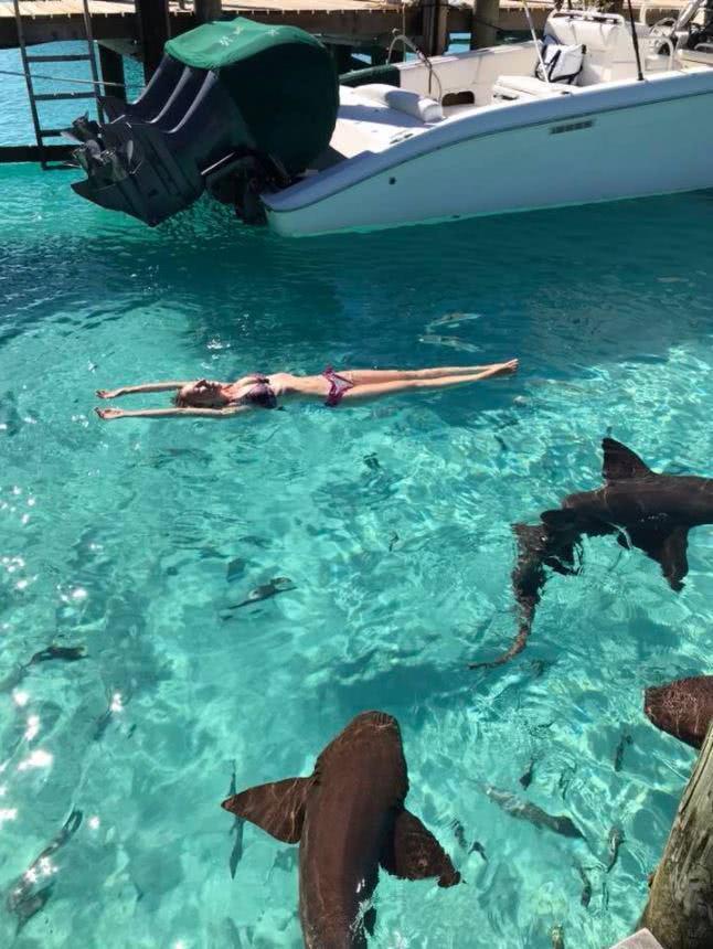 κοπέλλα δίπλα σε καρχαρίες