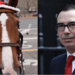 μνούτσιν και άλογο