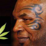ο τάϊσον και η μαριχουάνα
