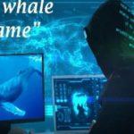 μπλε φάλαινα