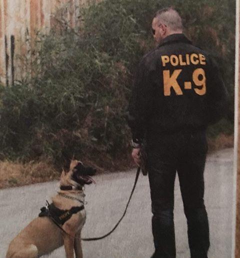 σκύλος ομάδας κ9