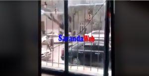 βίντεο του κατσίφα στην αλβανία