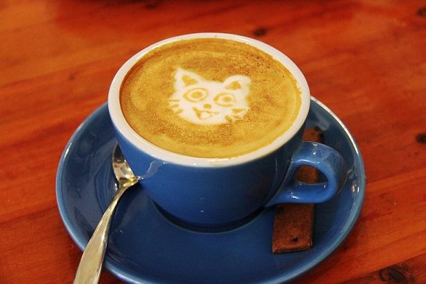 καφές με γατάκι