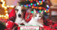 χριστούγεννα σκύλος γάτα