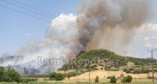 μεγάλη πυρκαγιά σε δασική έκταση της λαμίας